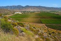 Vinos mexicanos y vinicolas de Mexico: A descubrir la zona vinicola de Durango.