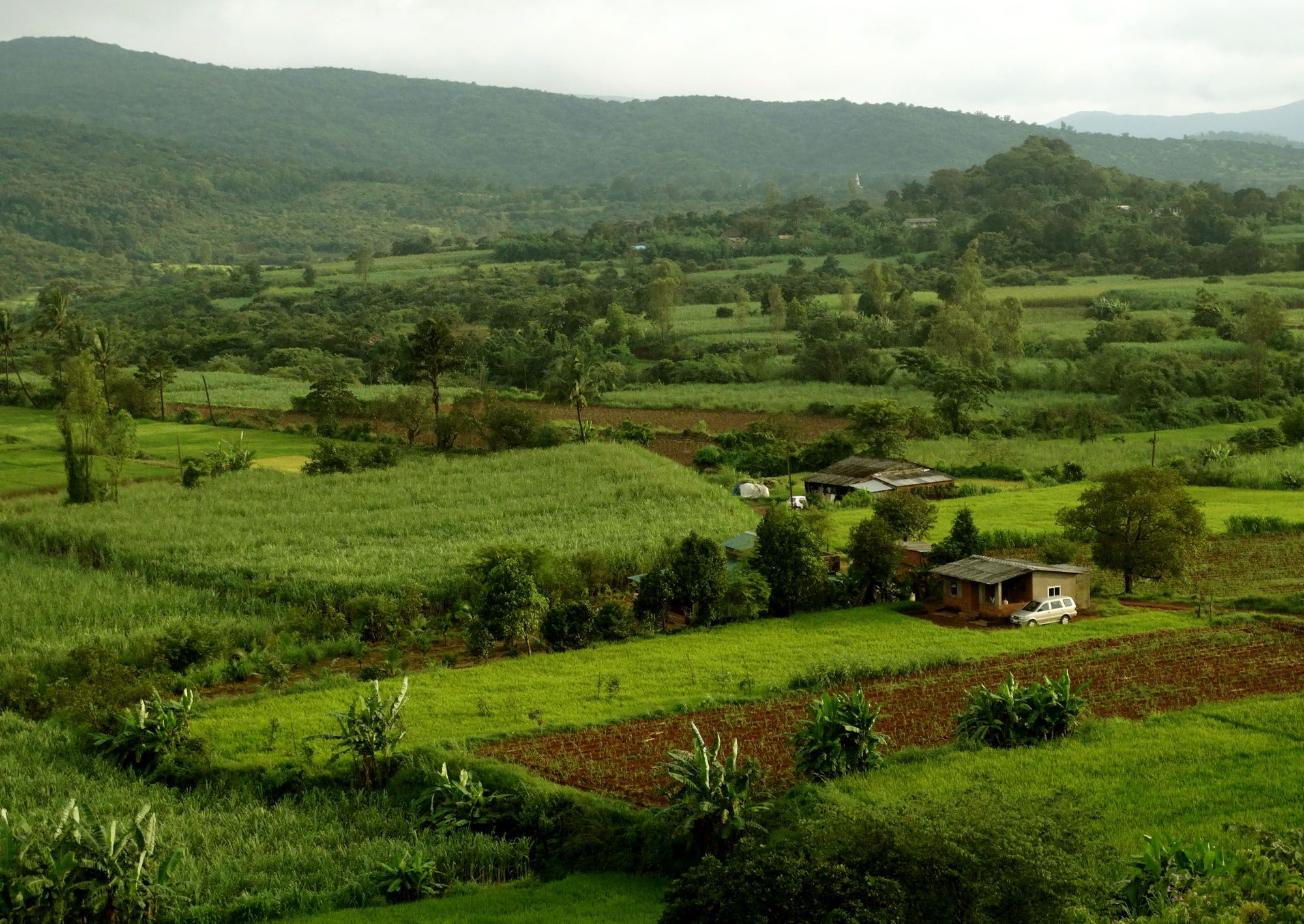 Savour The Beauty Of Palsambe Camping Landscape Farmland