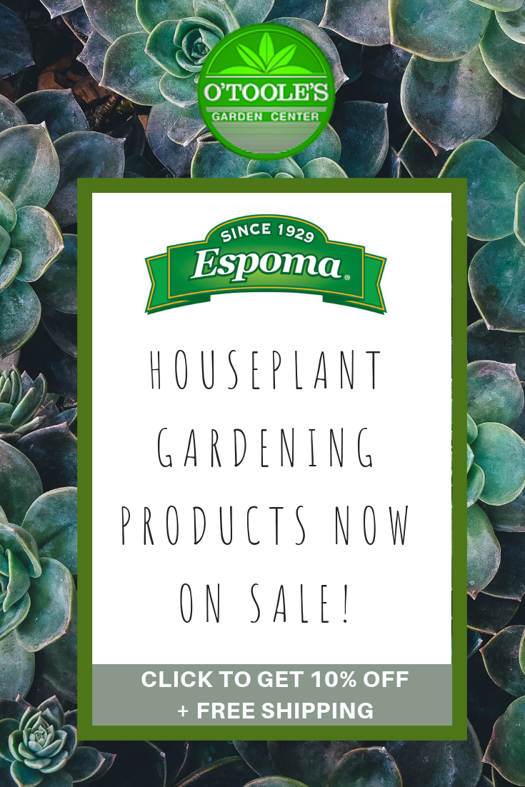 Shop The O Toole S Garden Center Sale Our Favorite Espoma Plant