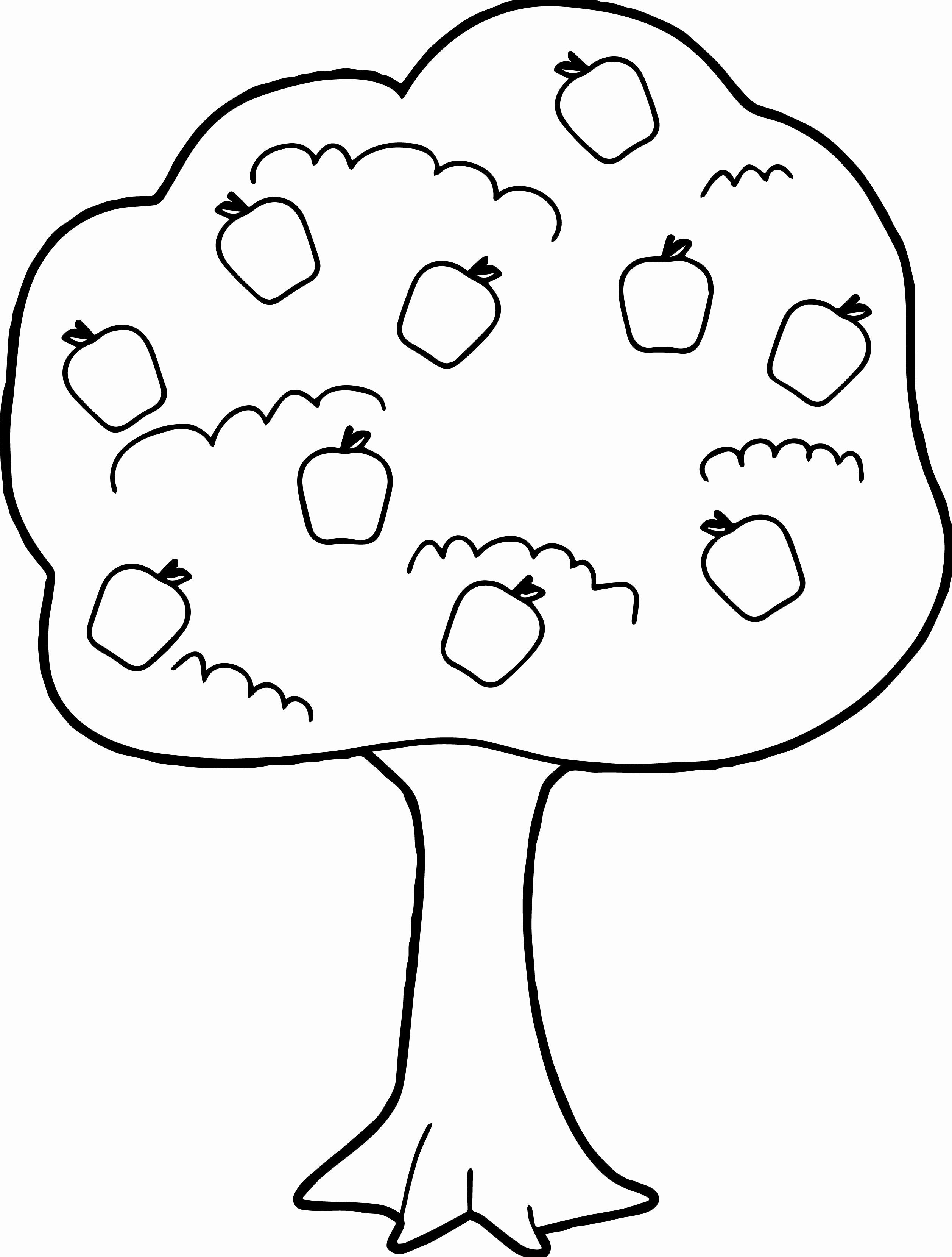 28 Apple Tree Coloring Page In With Images