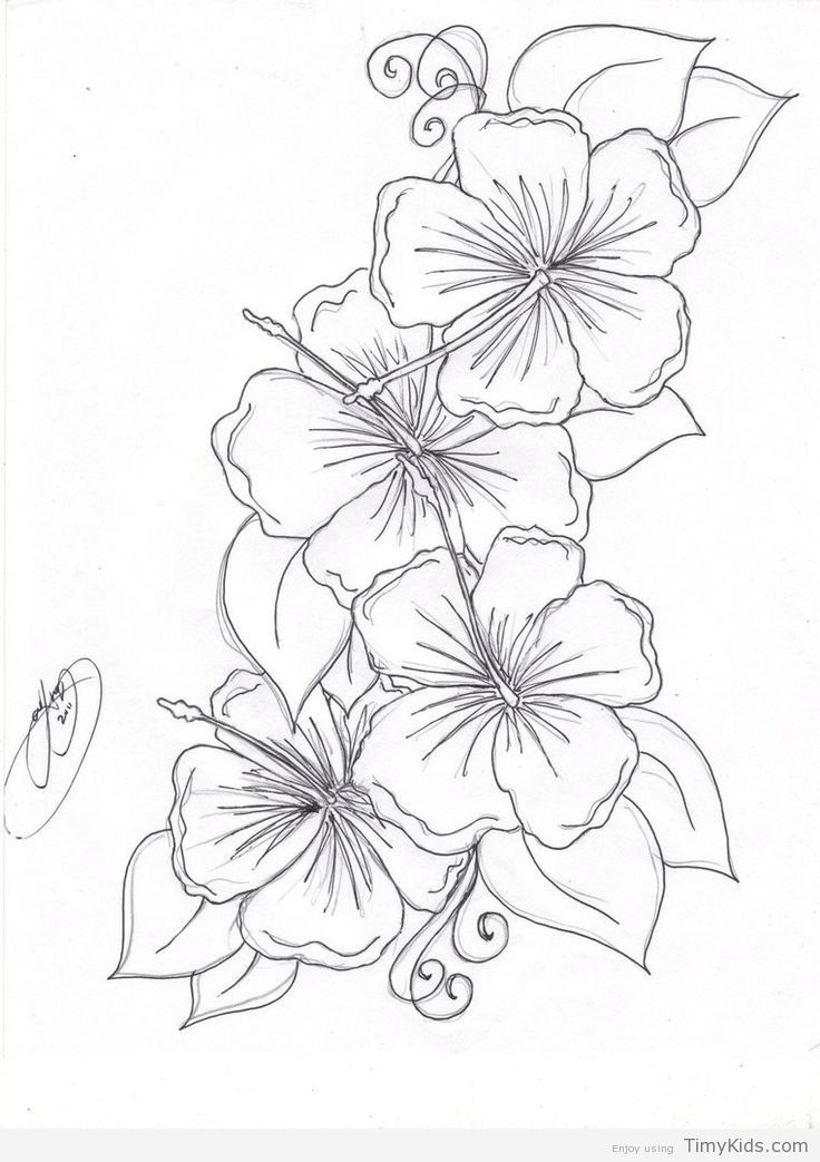 Timykids Beautiful Flower Coloring Pages
