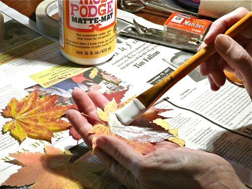 TO DO: Mod Podge Preserve Fall Leaves - Wow...How Come I Never Tried This?