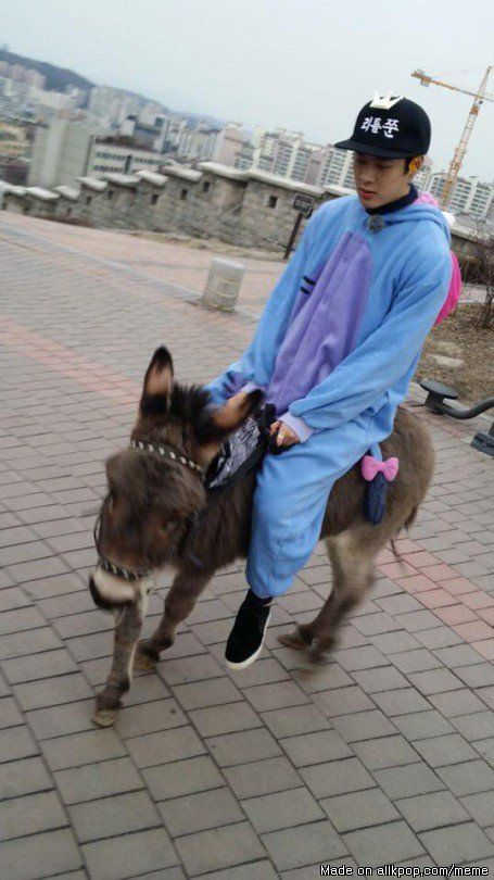 Typical Jackson Wang. Riding his B-day donkey and wearing a eeyore onesie.   allkpop Meme Center