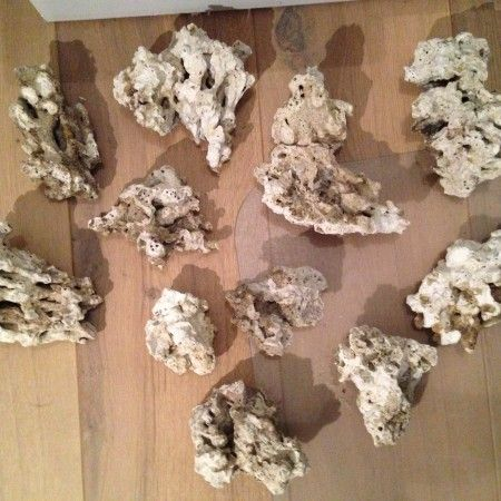 Minimalist Aquascaping - Page 75 - Reef Central Online ...