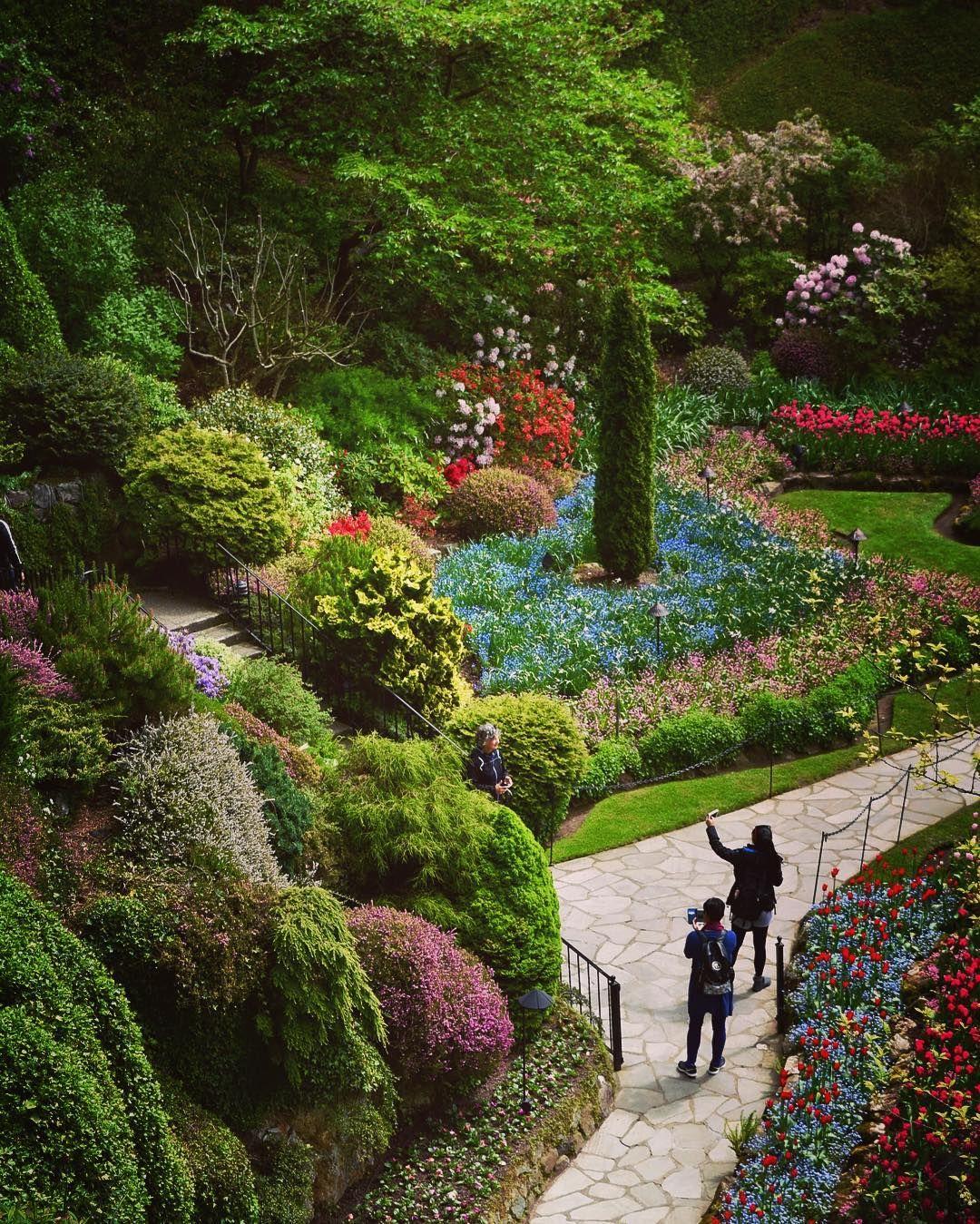 Butchart Gardens (Victoria, BC) by ArtofGardening.org (@jimcharlier) on Instagram