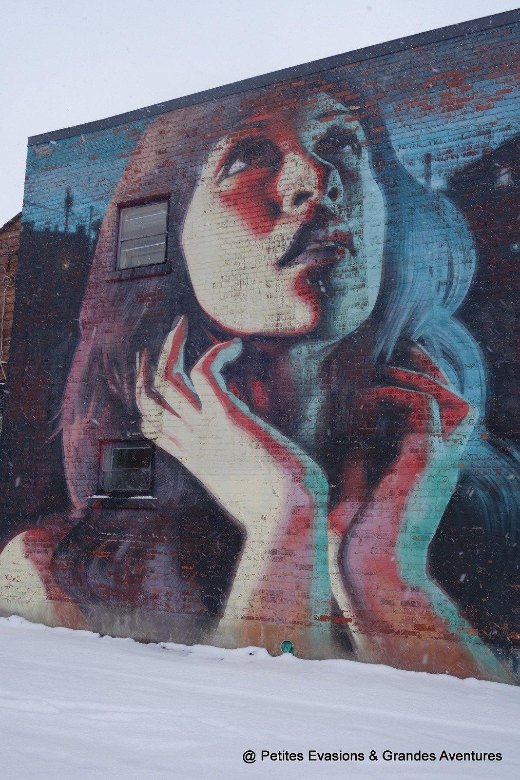 Street Art à Montréal Balade Photographique à Rosemont La Petite