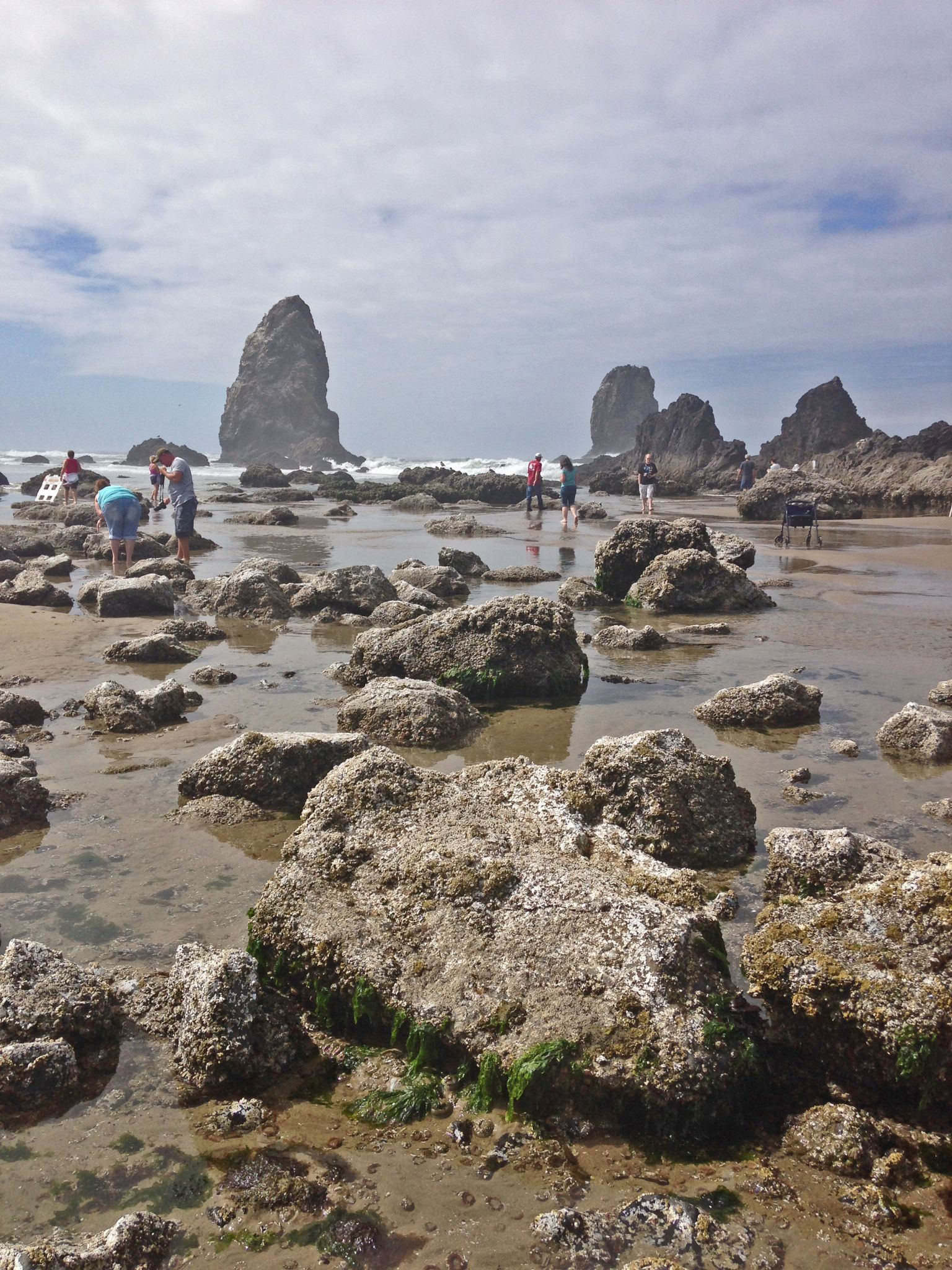 Oregon Coast  Low tide at Cannon Beach  | Living in the Western US