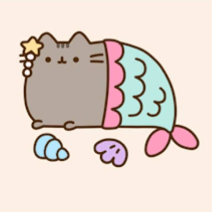 Pin by Erin Ckodre on Type Exercise 1   Pusheen cat ...