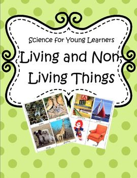 an experiment on what separate living things from non living things Introduction to living and nonliving: most children can identify living and nonliving objects center idea: students separate items representing living an nonliving things into two living and nonliving experiment love the thinking mat for scientific process.