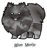 Cartoonize My Pet Zazzle store. The only place with a wide array of not only pets but also colors!