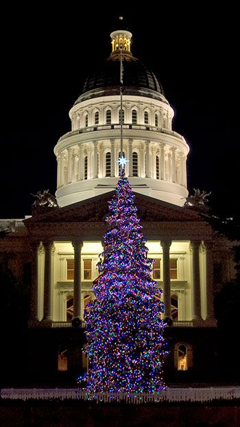 Google Image Result For Http Www Noehill Com Sacramento Images California Capitol Christmas Tree Medium Jpg Sacramento County California Sacramento