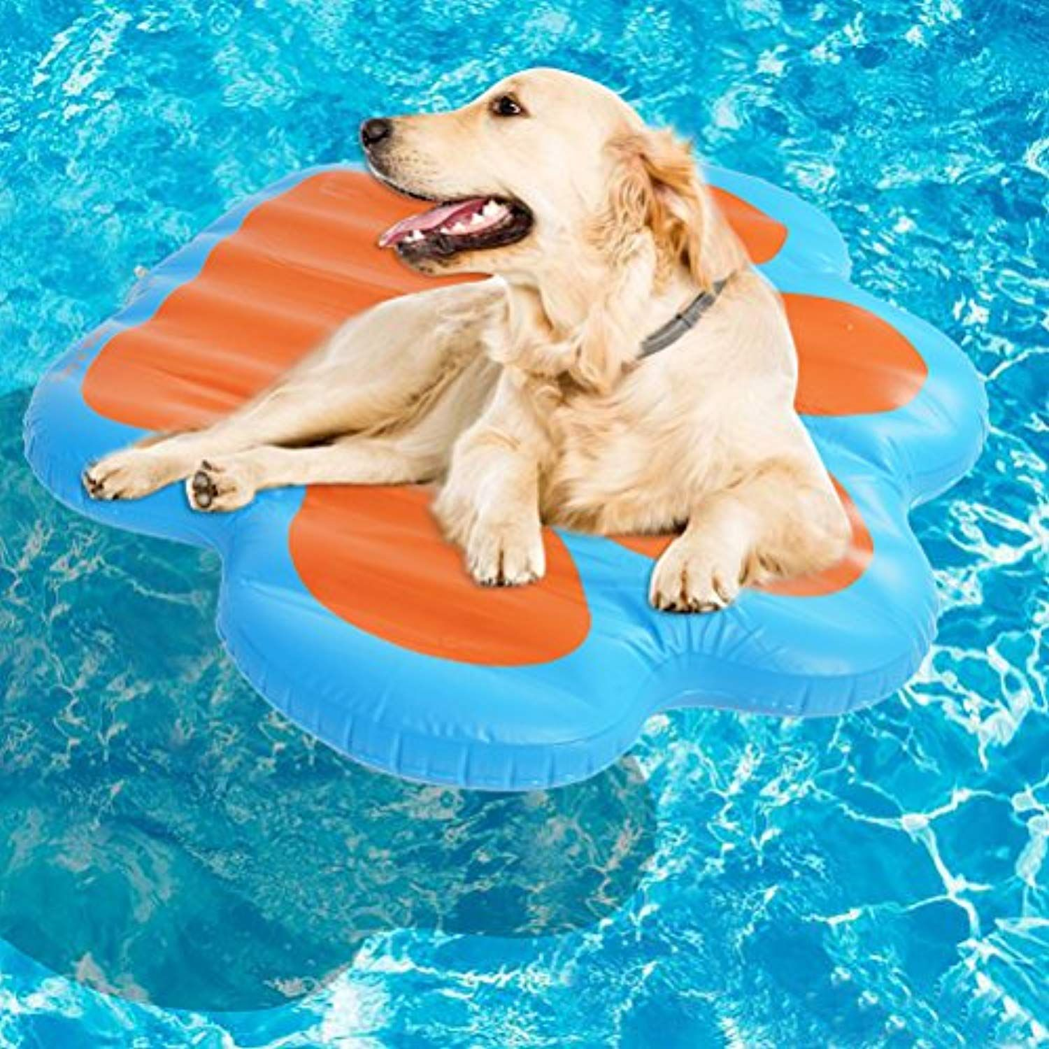 Kooltail Paw Dog Pool Float Large Inflatable Raft For Pets 49 X