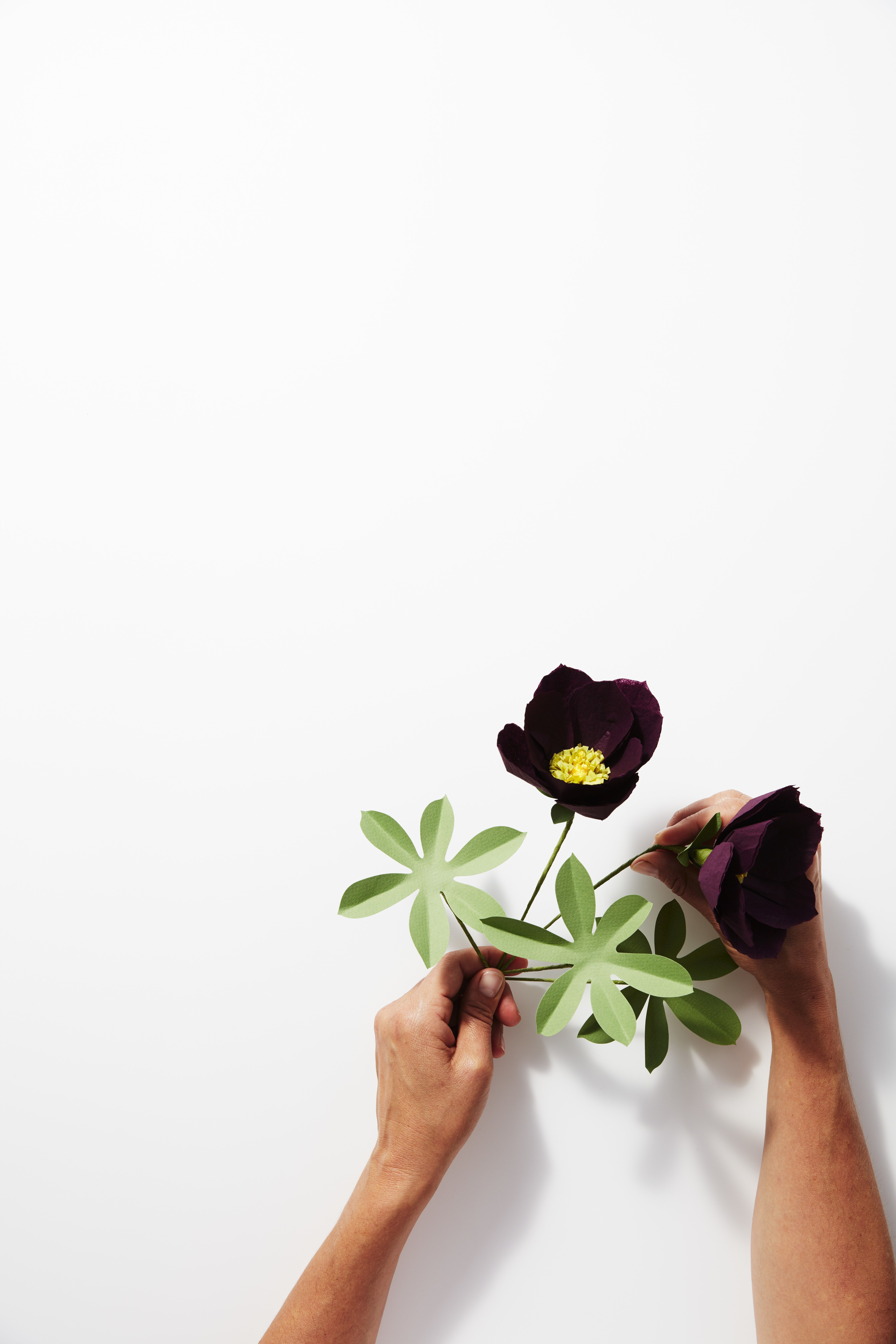 Paper Flowers The Global Ancient Roots Of A Contemporary Maker