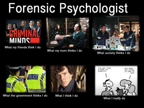 Forensic Psychologist Counseling Psychology Psychology Psychology Major