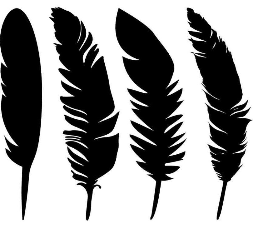 Free Feather SVG, PNG Cut Files for your T-Shirt, Tank Top or Sweatshirt
