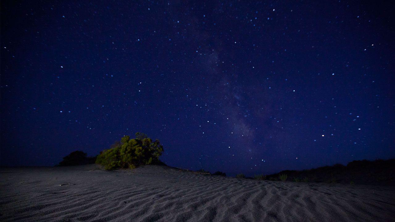 фото ночного неба в сахаре розы нуждаются только