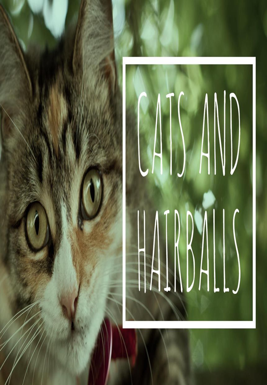 6 Fascinating Facts About Cat Hairballs Cat Guides Cat Facts Cats Cat Care
