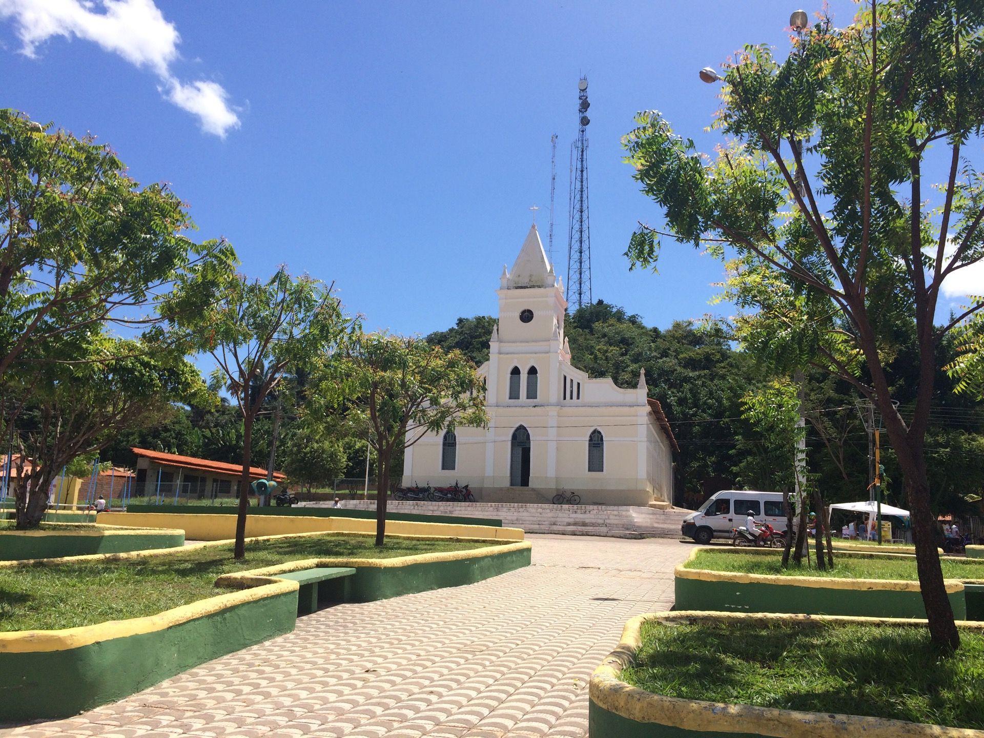 Buriti Maranhão fonte: i.pinimg.com