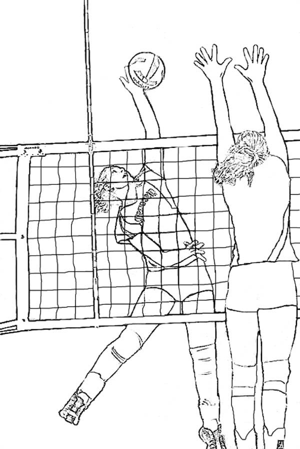 Realistic Coloring Page Of Volleyball Download Print Online Coloring Pages For Free Color Nimbus Sports Coloring Pages Coloring Pages Volleyball Drawing