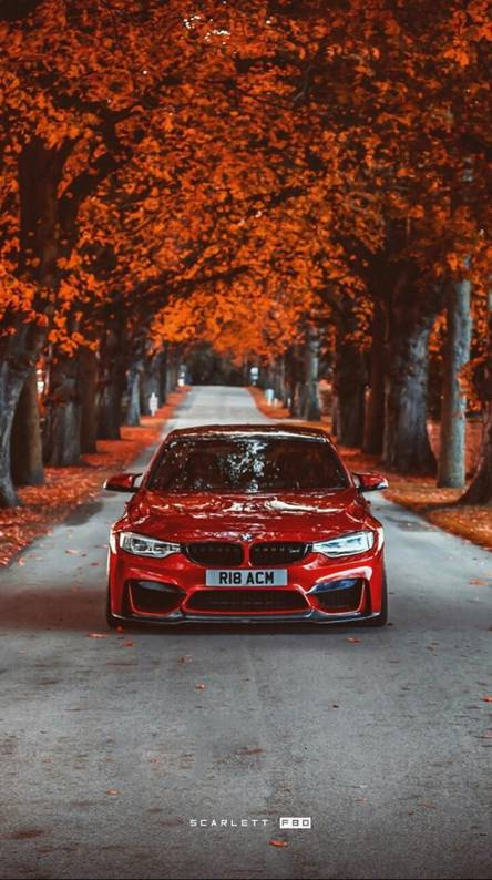 Compiled From The Best Bmw Wallpapers One Of The Best Car Brands In The World Download Your Favori Bmw M Iphone Wallpaper Bmw Wallpapers Car Iphone Wallpaper