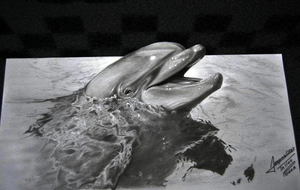 Amazing 3D Drawing by Joaquim José Maio Cruz - Portugal #Dolphin