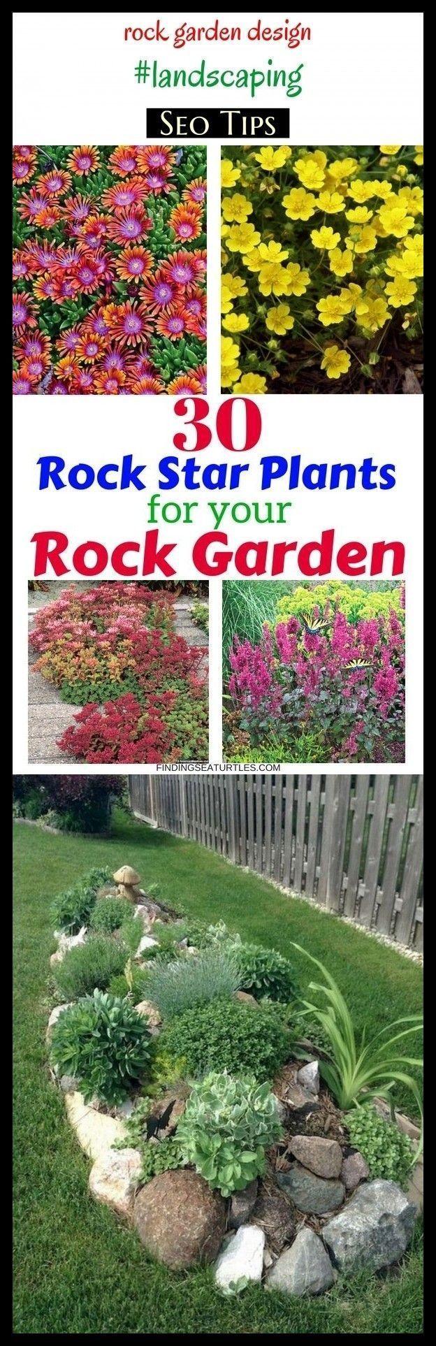 Photo of Rock garden design # landscaping # seo2020 # gardens. – Winter garden ideas