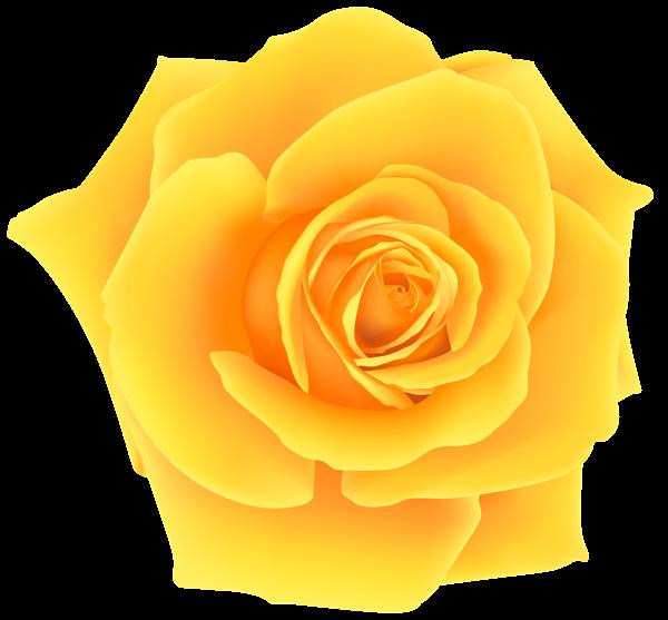 Yellow Rose PNG Clip Art Image Adesivos de unhas