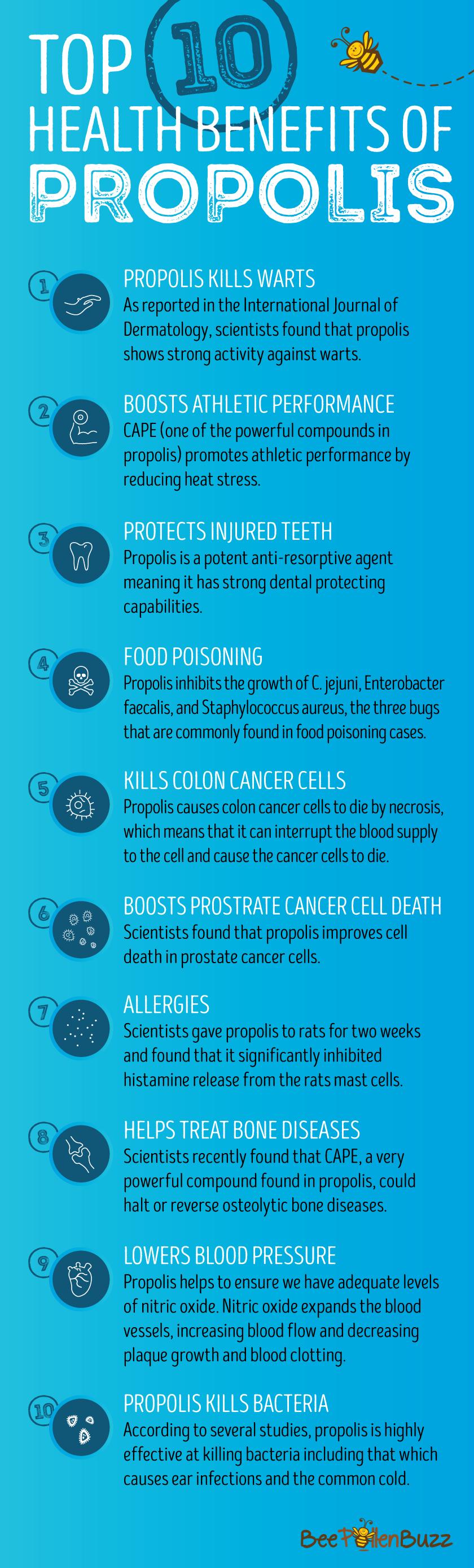 Infographics Propolis Health Benefits Health