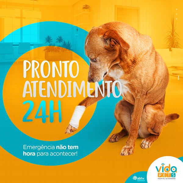Vida Pets Social Media On Behance Marketing De Midia Social Cartazes Criativos Midias Sociais