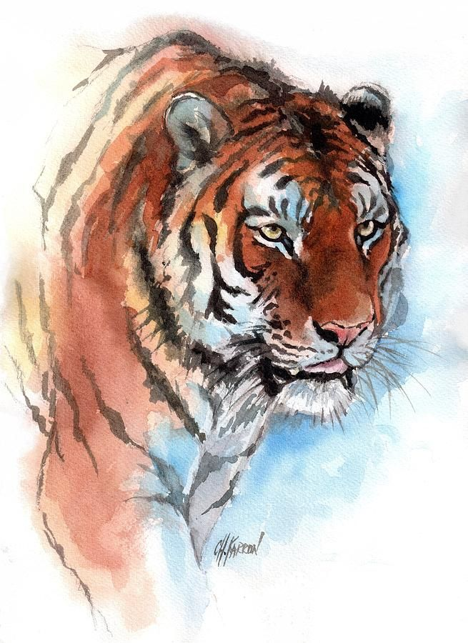 Amur Tiger Painting Watercolor Tiger Tiger Painting Big Cats Art