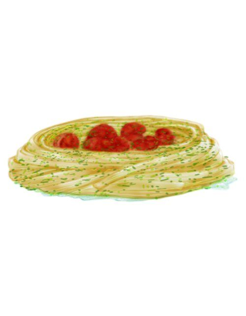 Beautiful Proportion by Fibonacci: food sketch