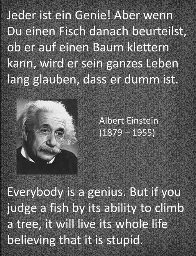 Einstein Zitat Albert Einstein Quotes Einstein Quotes Quotes