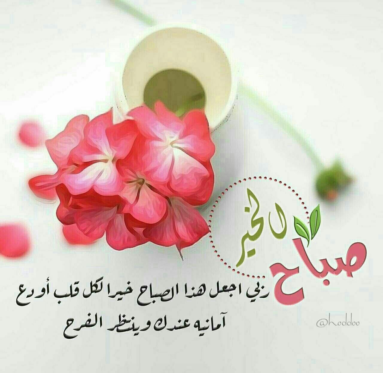 إشــツـراقة الصبــ ــاح هنيئا لمن يبدأ يومه بهذه العبارة يا مالك الملك وكلت Beautiful Morning Messages Good Morning Arabic Good Morning Flowers