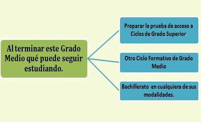 Fp Módulo Grado Medio Técnico En Gestión Administrativa Qué