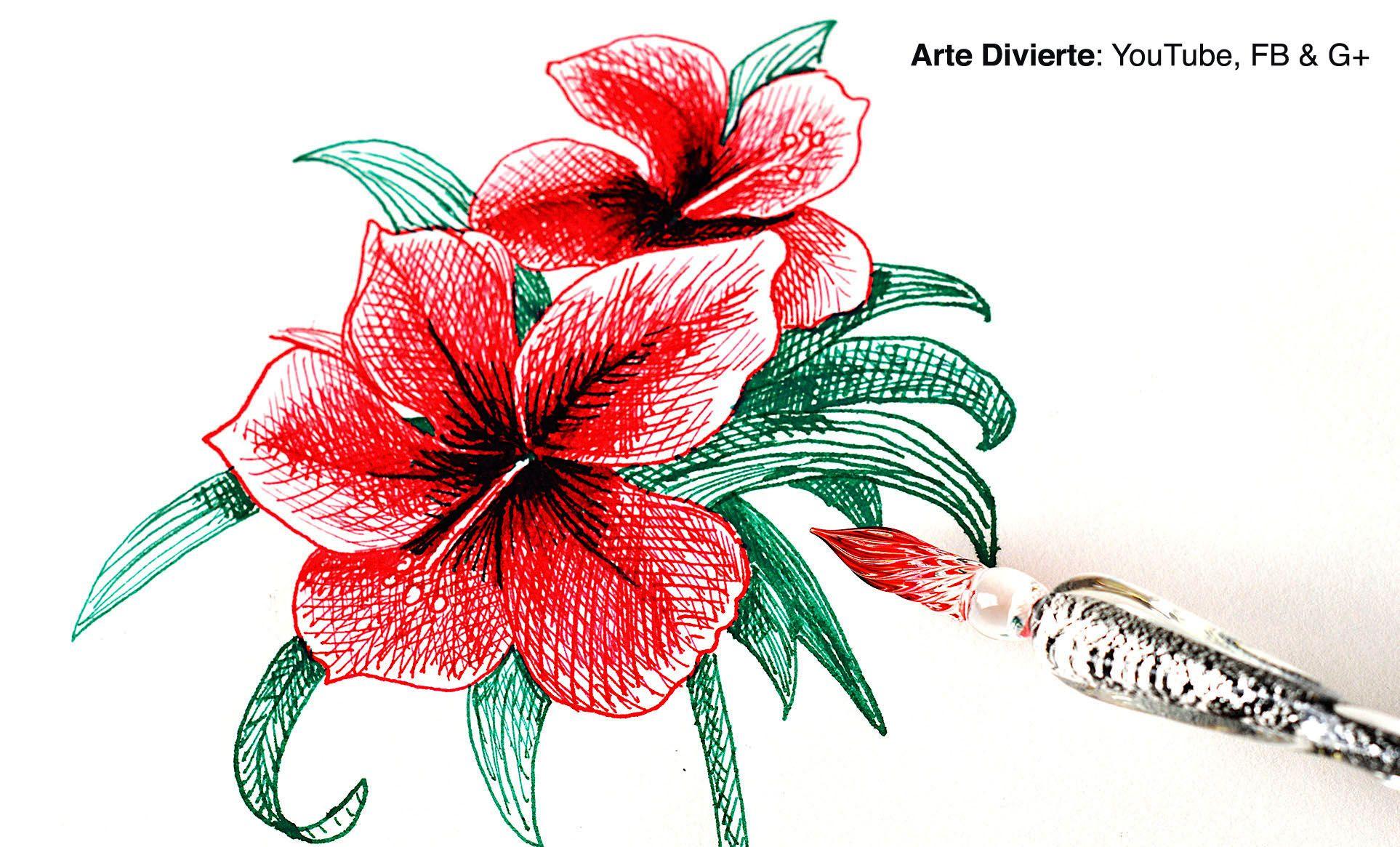 Como Usar Una Pluma De Vidrio Y Como Dibujar Una Flor De La India Arte Dibujo Artedivierte Flordelaindia Hibisc Hibiscus Drawing Ink Pen Drawings Dip Pen
