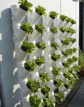 Horta vertical em PVC