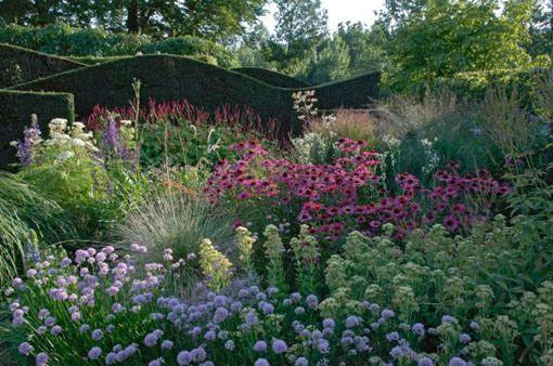 Piet Oudolf: el dinamismo de las herbaceas en los parques públicos - PLOG » PLOG