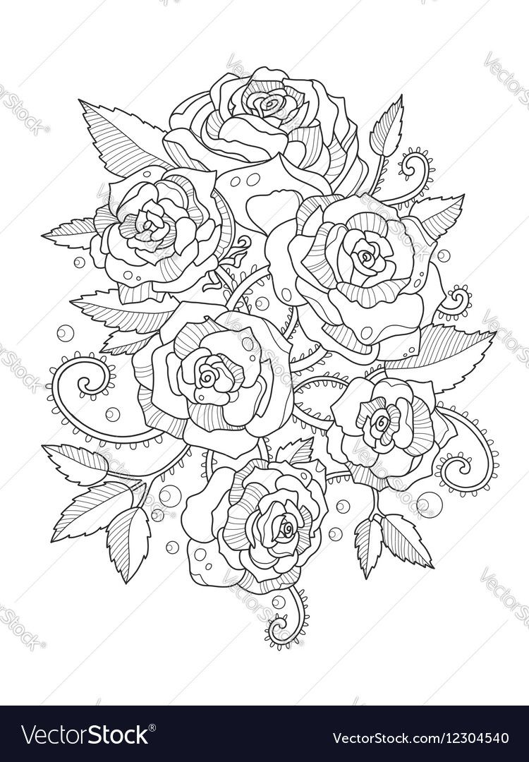 Roses coloring book for adults Vector Image by apokusay ...