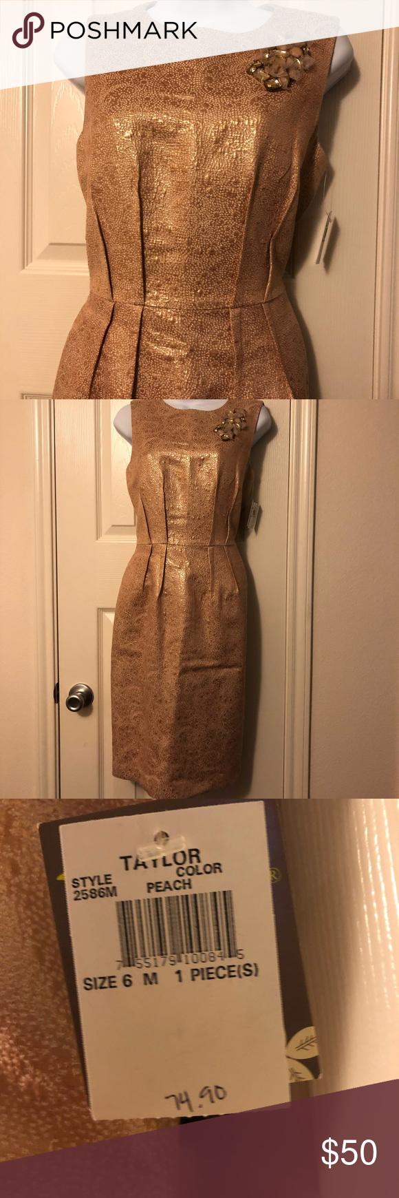 Taylor Dress Size 6 Nwt Taylor Dress Size 6 Nwt Taylor Dresses Wedding Guest Dress Guest Dresses Plus Size Wedding Guest Dresses [ png ]