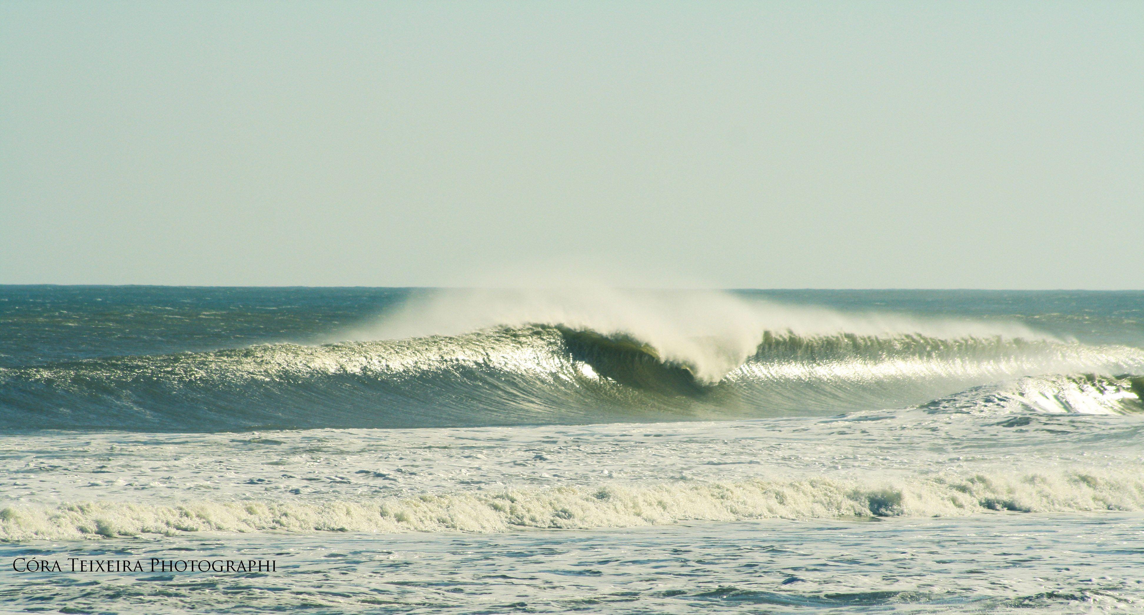 Surf - Maresias