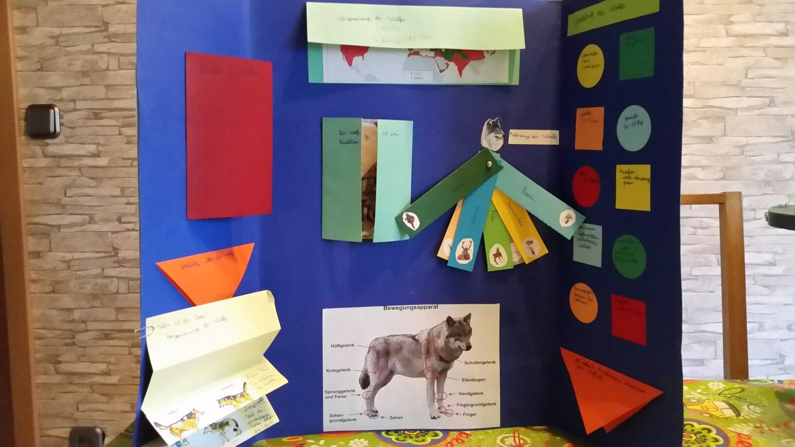 Lapbook Wolf | lapbook wolf | Pinterest