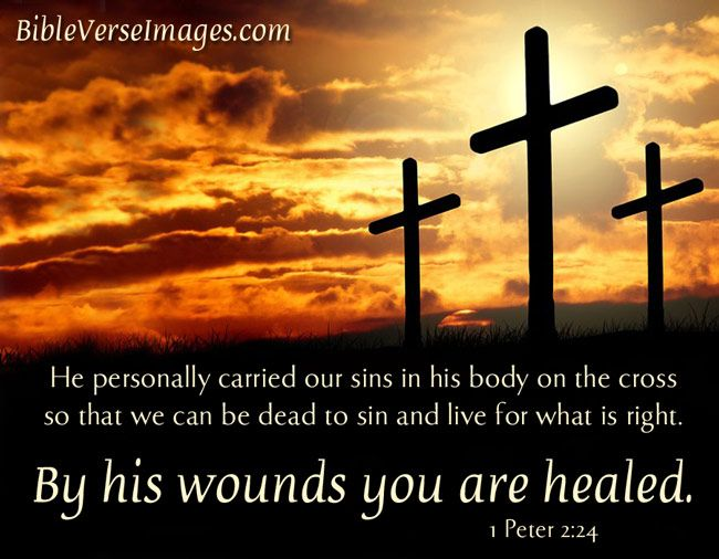 1 Peter 224 Healing Bible Verse On An Inspirational Image