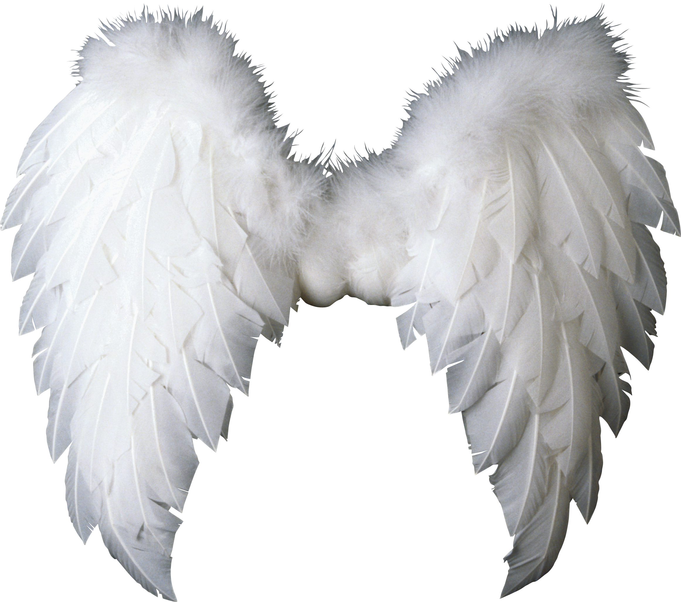Guardian Angel Clipart Black And White All Of These Angel Clipart Resources Are For Download On 123clipartpng