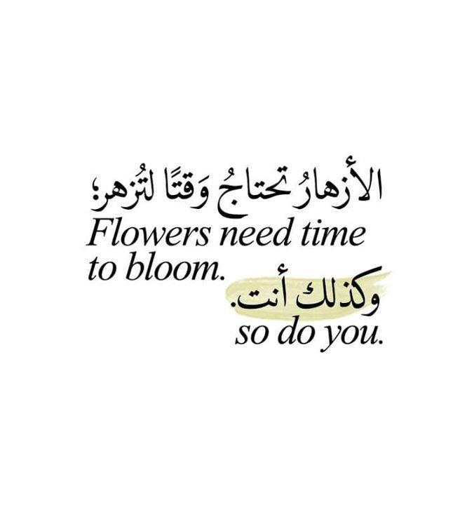 الأزهار نحتاج وقتا لتزهر وكذلك أنت Words Quotes Wisdom Quotes Life Wisdom Quotes