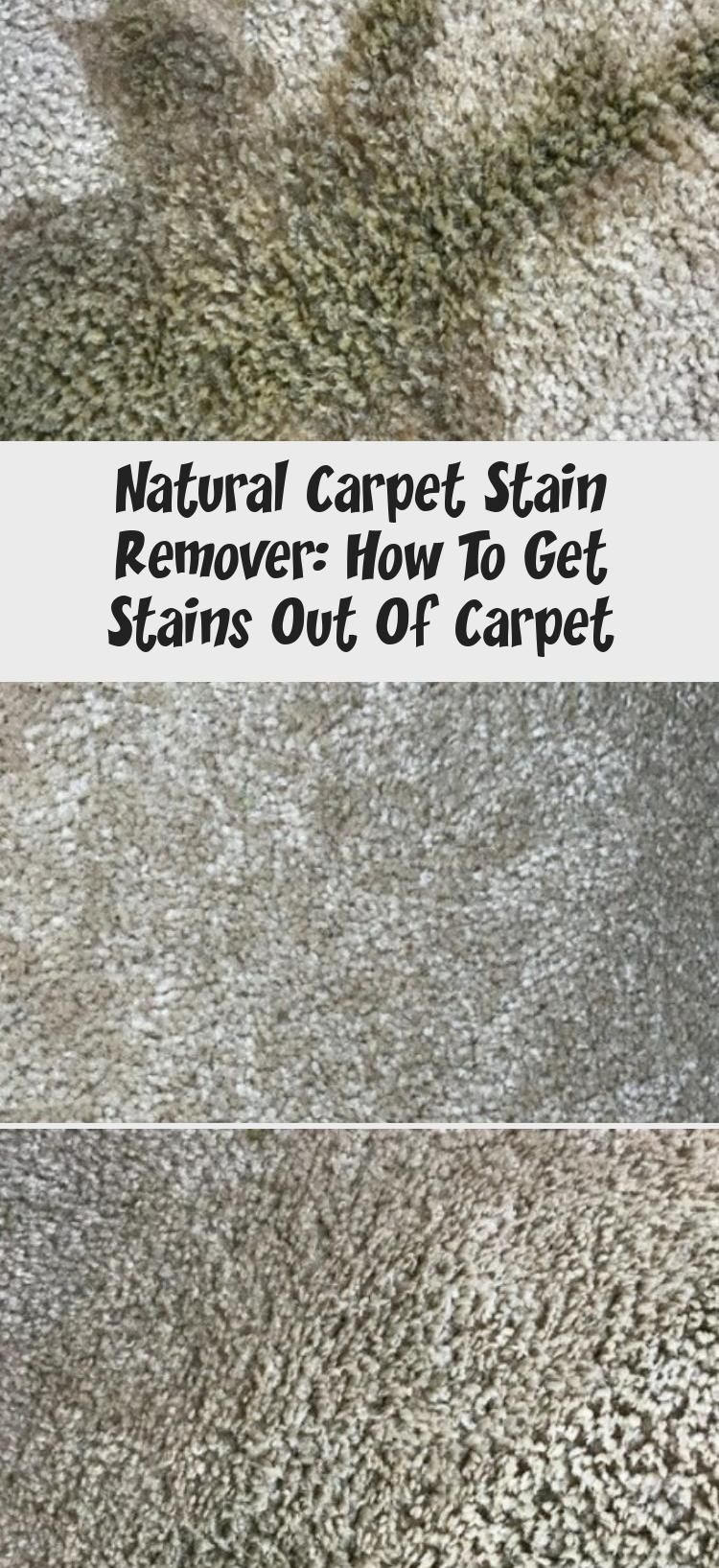Natural Carpet Stain Remover How To Get Stains Out Of Carpet In 2020 Stain Remover Carpet Natural Carpet Natural Carpet Cleaners