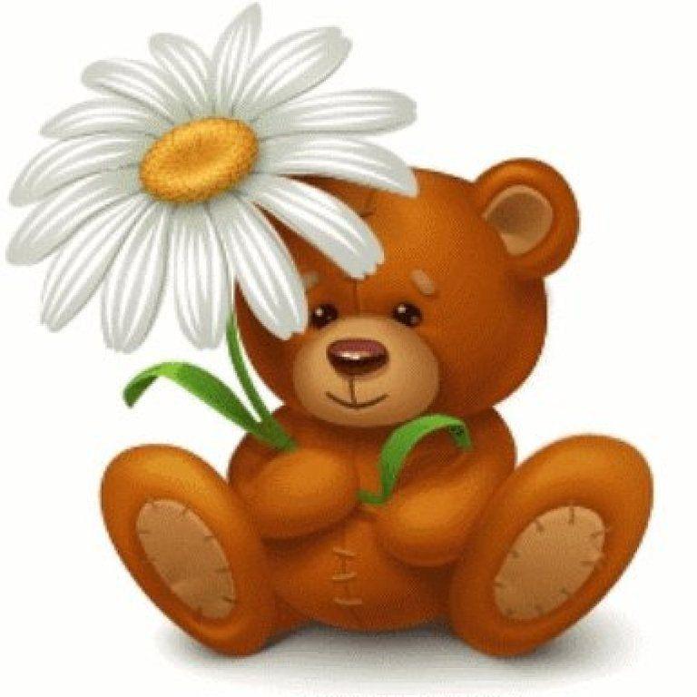 худая картинки медвежонка с ромашками садятся диеты, ходят