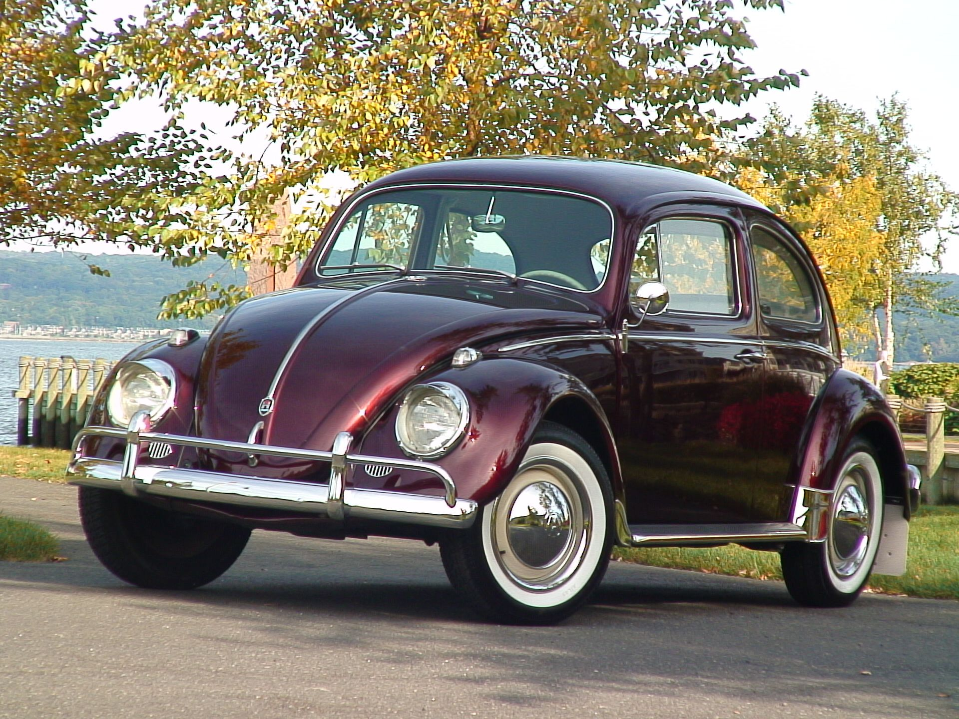 Special cars volkswagen beetle bug v8 - 1960 Stunner Vw Beetle Bug Sedan Classic Vw Beetles Bugs