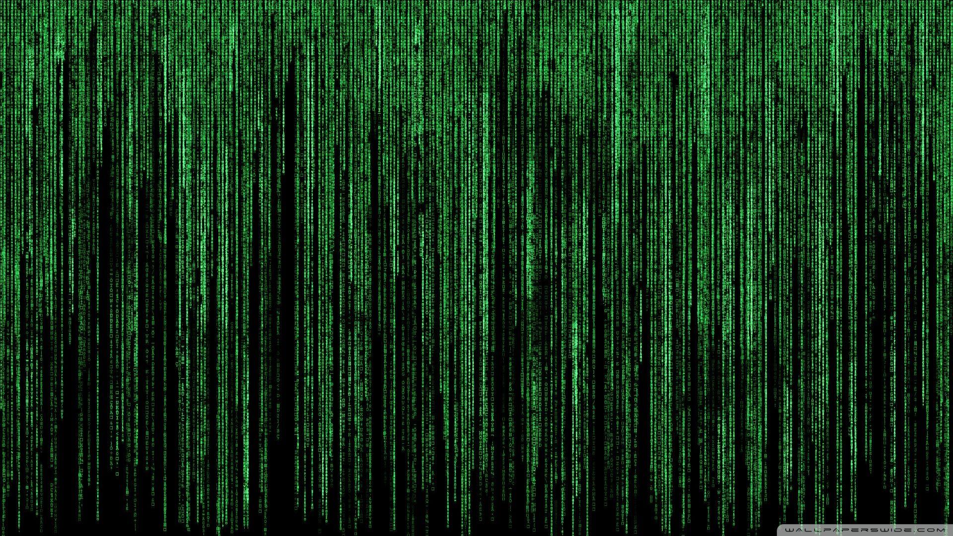 The Matrix Hd Wallpapers Backgrounds Wallpaper Desktop Wallpapers Backgrounds Hd Desktop Hd Wallpaper