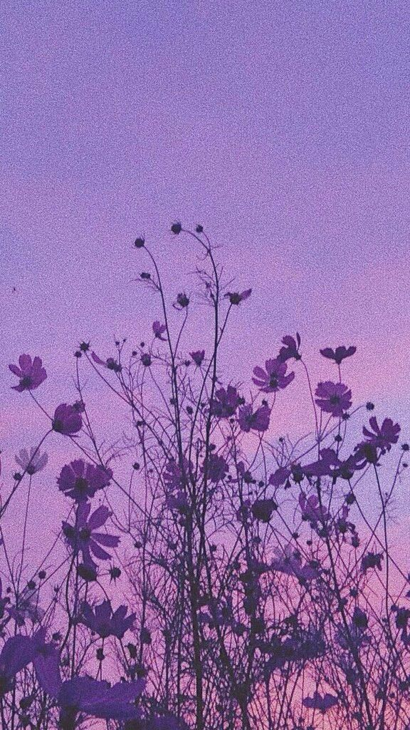 Purple Aesthetic Vintage Flowers