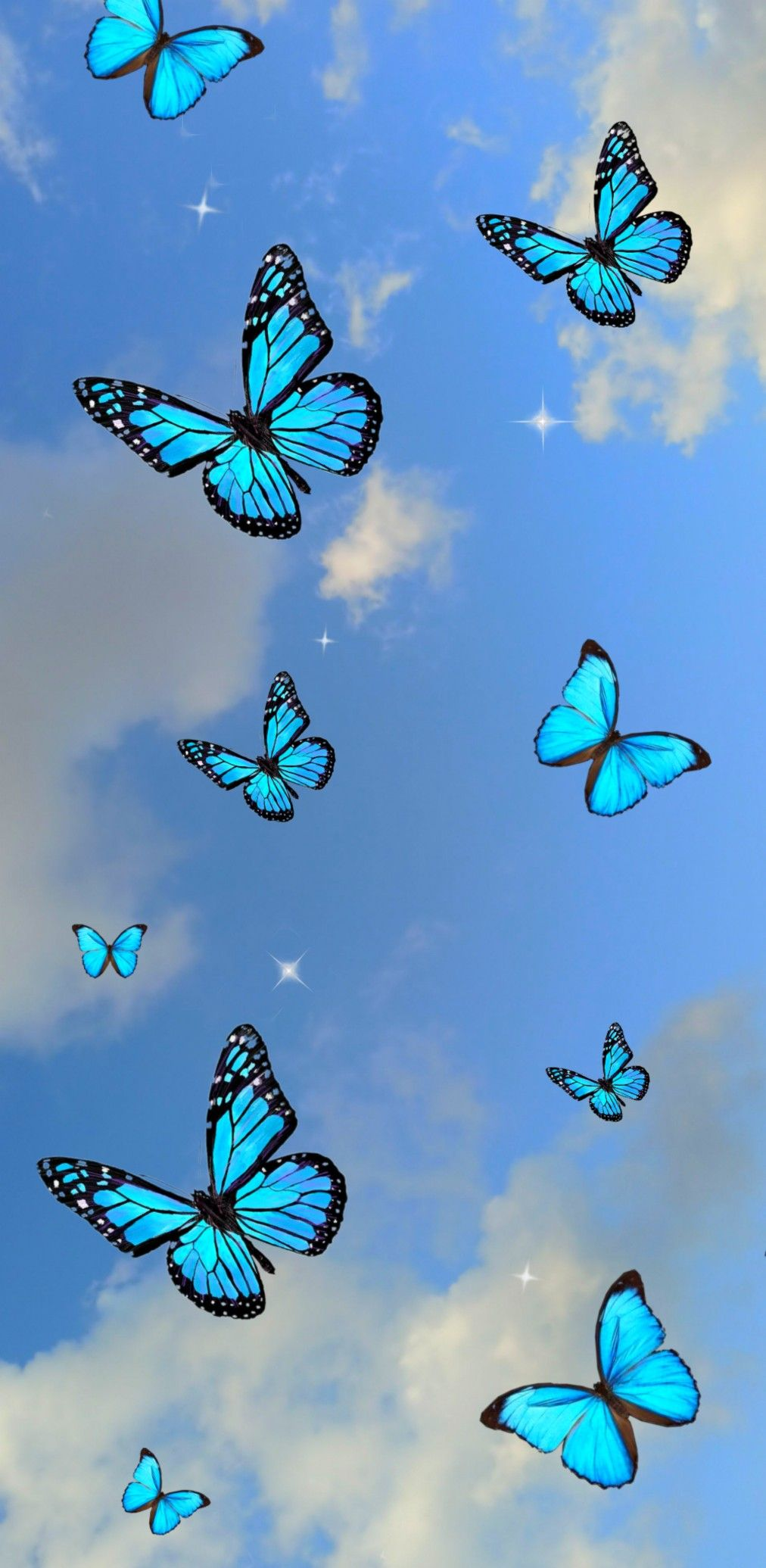 Butterfly wallpaper em 2020 Imagem de fundo para iphone